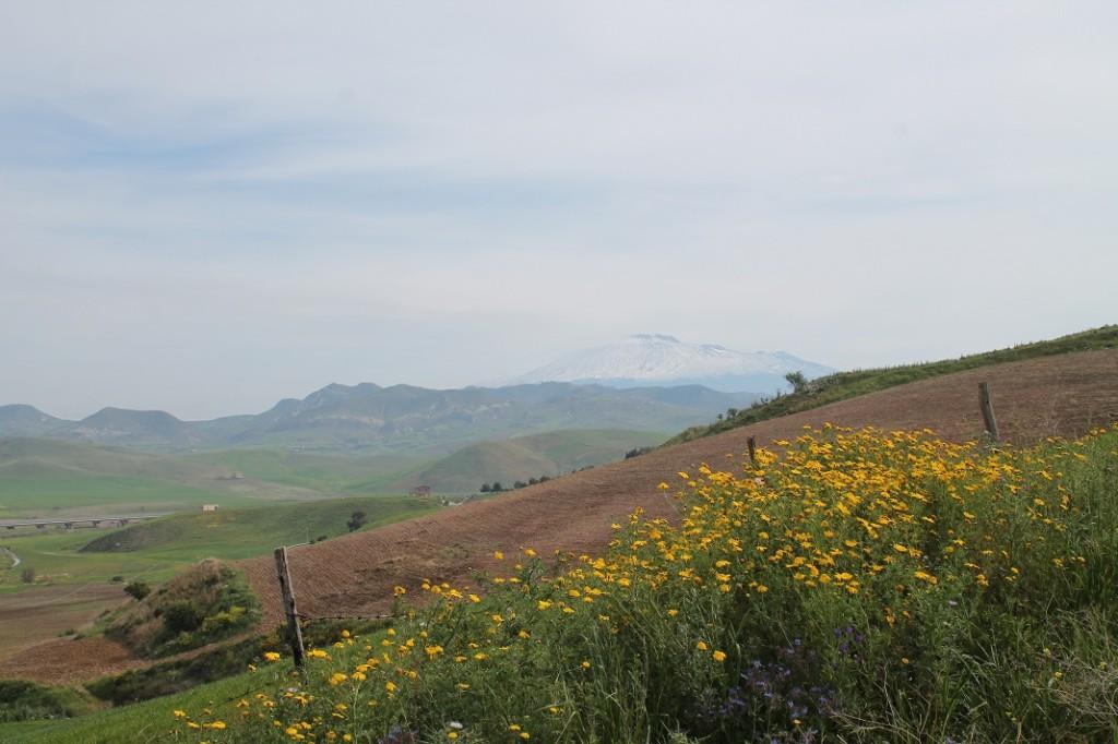 Monte Scarpello 017