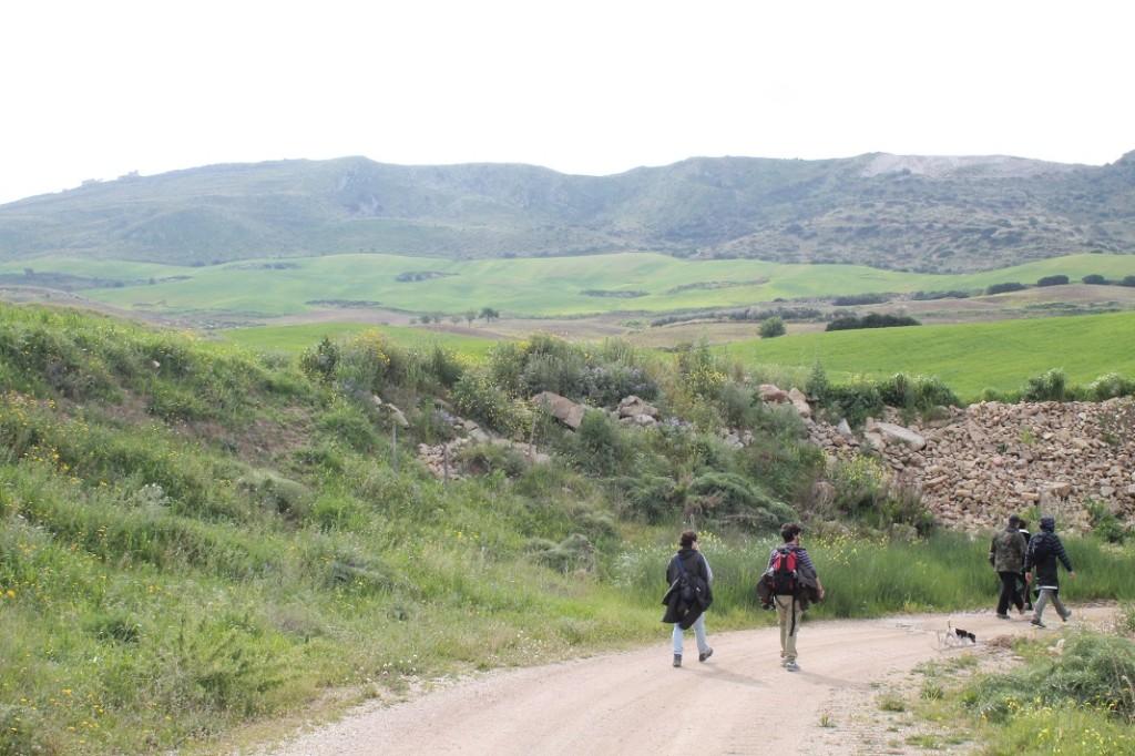 Monte Scarpello 022