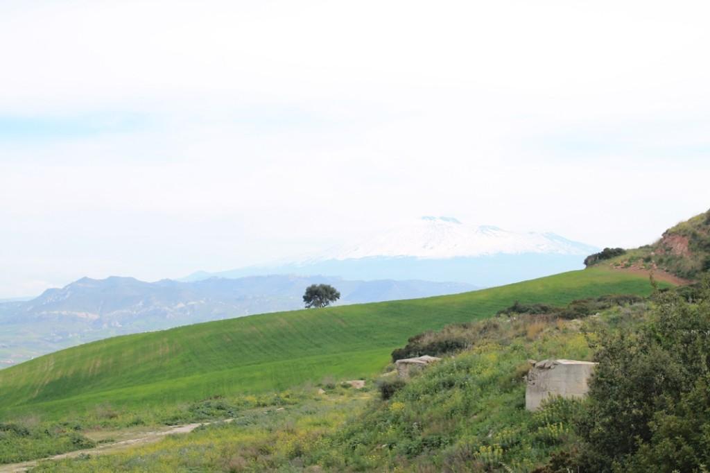 Monte Scarpello 031