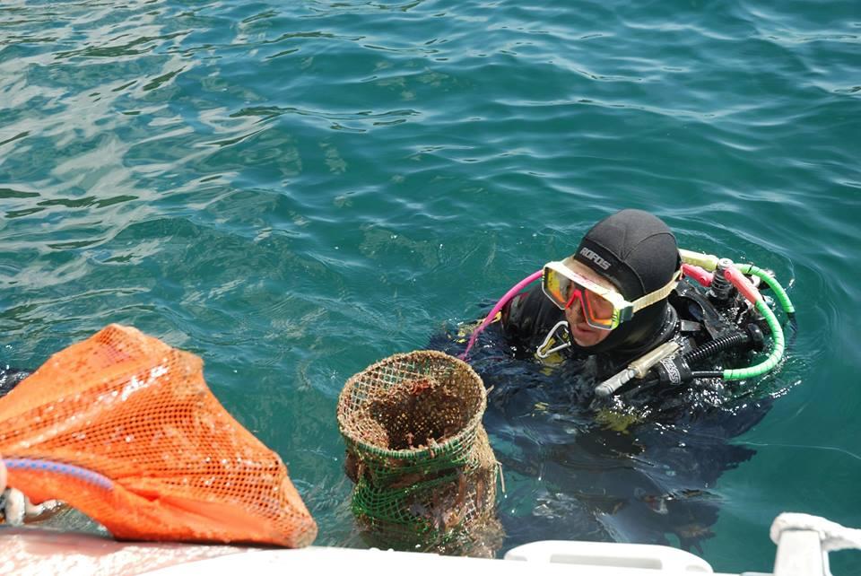 talas diving1